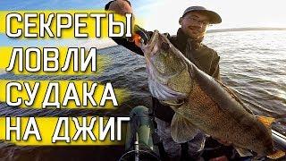 ХИТРОСТИ ЛОВЛИ СУДАКА! Ловля судака на джиг! Рыбалка 2019!