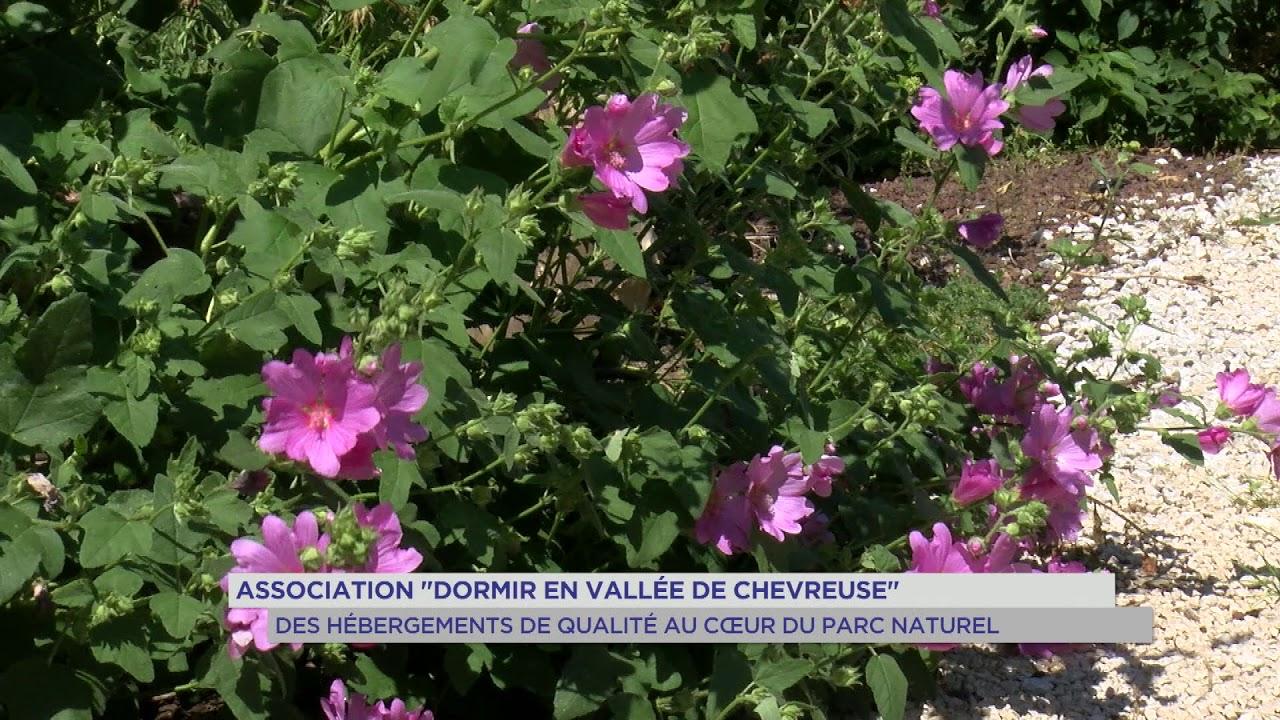 Vallée de Chevreuse : se mettre au vert au sein du PNR
