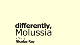 DIFFERENTLY, MOLUSSIA (2012) Trailer - The Light & Sound Machine