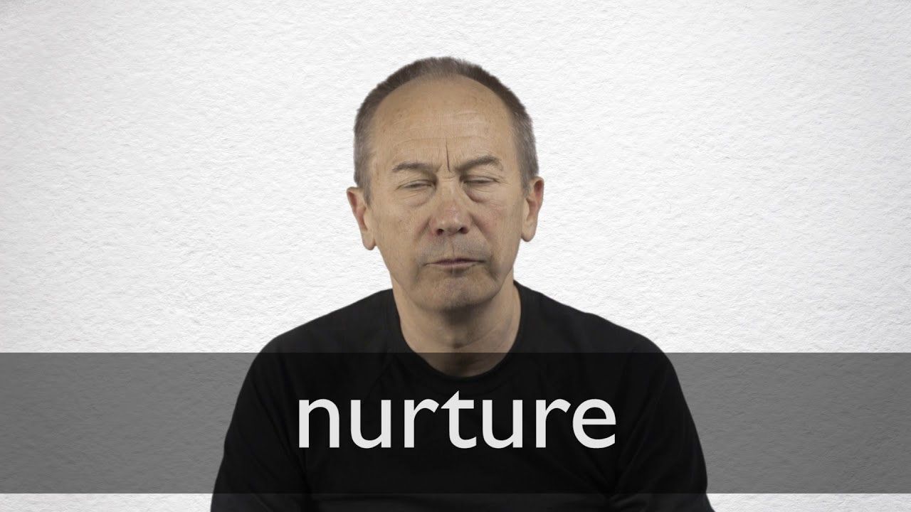 Nurture definition and meaning   Collins English Dictionary