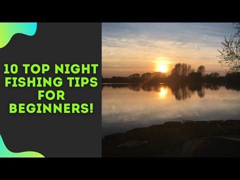 Essential Night Carp Fishing Tips For Beginners | 2019