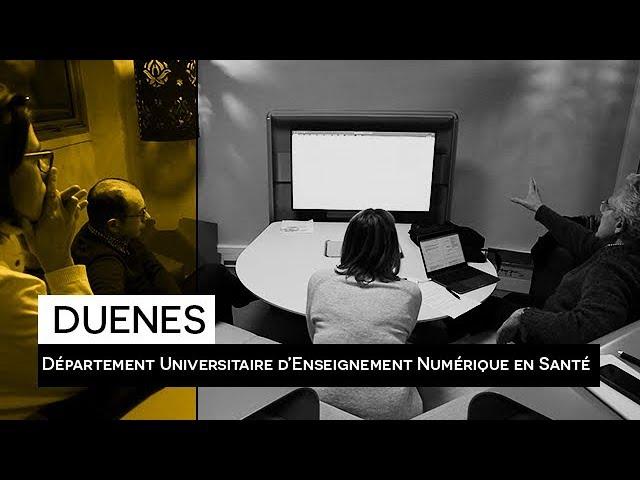 DUENES, Département Universitaire d'Enseignement Numérique en Santé