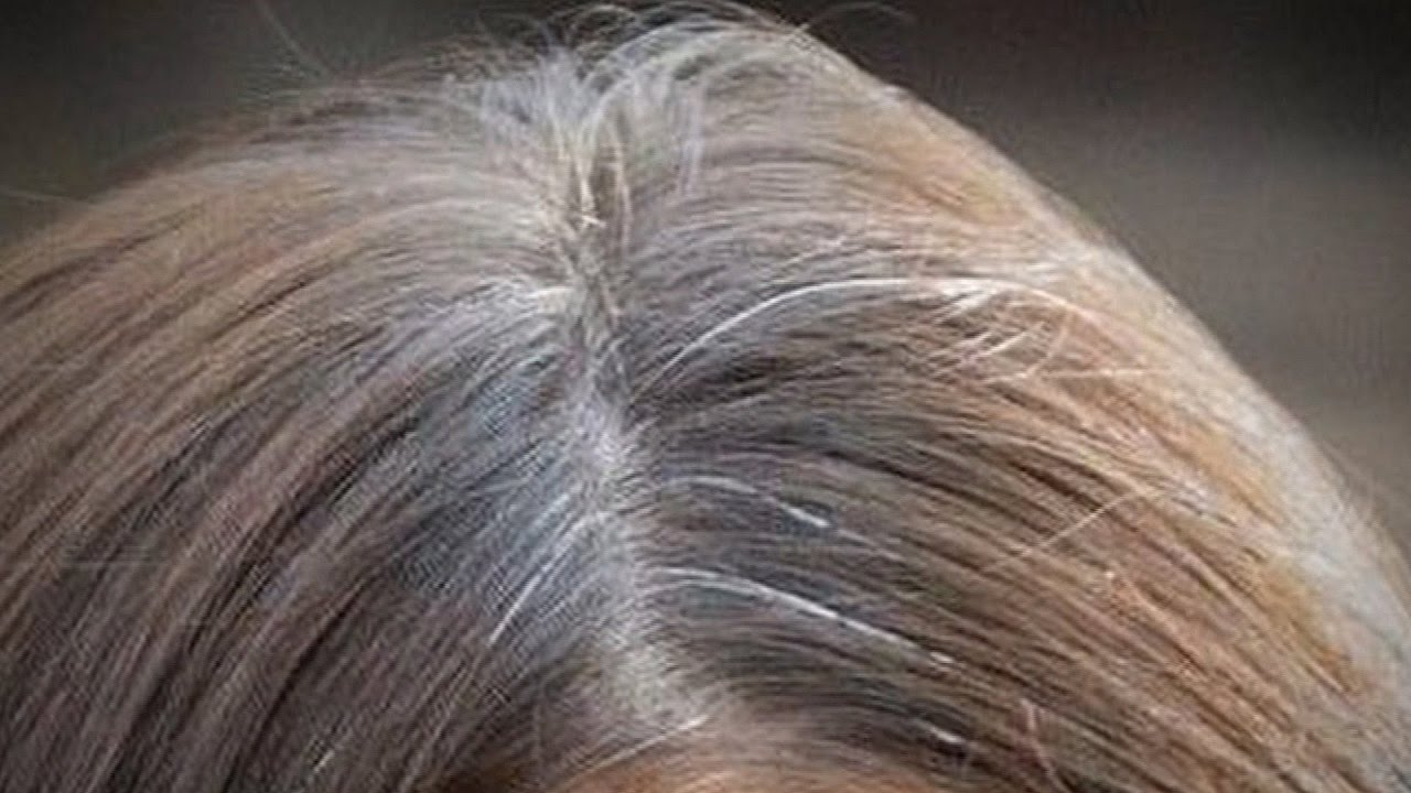 Silver Grey Hair Wigs