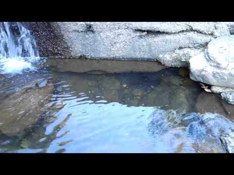 Creek at Hot Springs National park