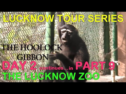 LUCKNOW TOUR SERIES PART 9 (THE LUCKNOW ZOO)