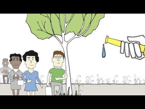 Schools WSUD animation