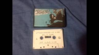 The Truth About Dreaming/Crocodile hiss split