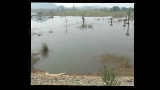 Naveen Jindal Angul WATERGATE