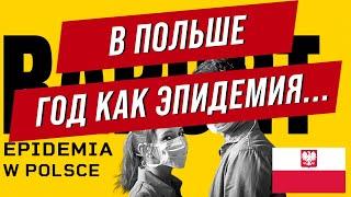 Коронавирус в Польше Год эпидемии