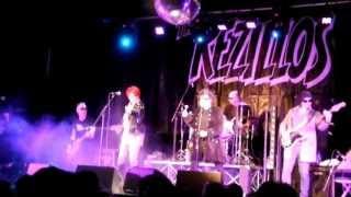 "The Rezillos- ""Live at 229, London - 26 April 2013"" (full show)  | dsoaudio"