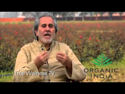 Bruce Lipton - The Danger of Conventional Medicine