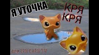 LPS клип: Я уточка (на конкурс для LPS CATS TV)