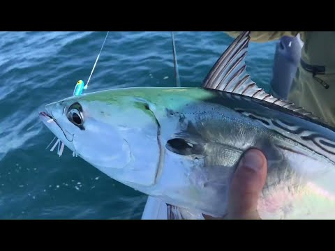 Offshore Fishing with Artificial Lures