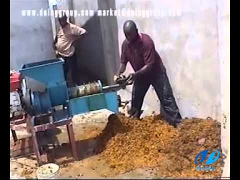 Small palm oil expeller/palm oil press machine running video