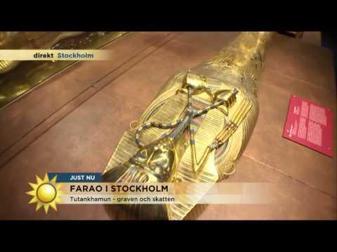 Fy Farao, Vilka Skatter! - Nyhetsmorgon (TV4)