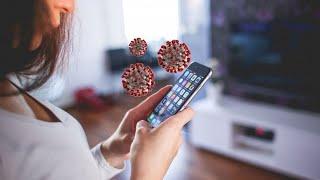Мобильное приложение выявляет коронавирус Провести досуг становится безопаснее