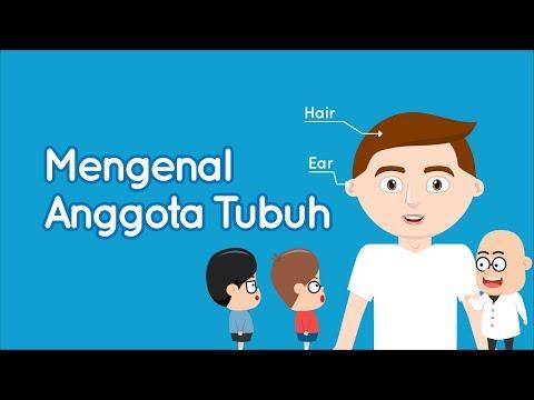 Mengenal Anggota Tubuh Bahasa Indonesia Dan Inggris Eza Dan Adi Youtube