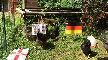 Tooortheil tippt! Deutschland - Achtelfinalgegner