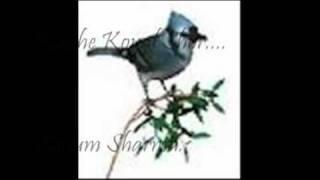 68-Kaahe Koyal Shor.... Shamshad Begham...Resung By  Kusum.