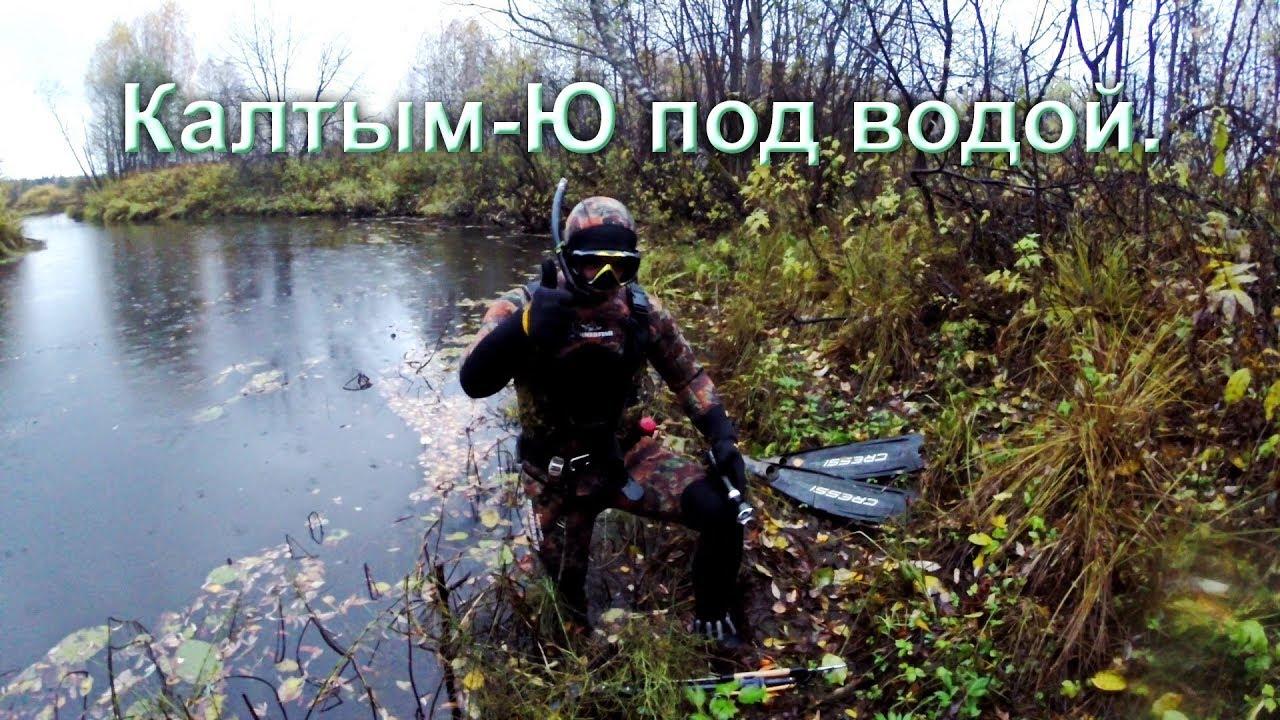 Река Кылтым-Ю под водой. Республика Коми.