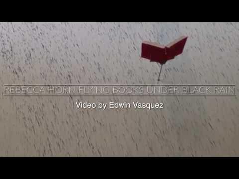 REBECCA HORN Flying Books Under Black Rain