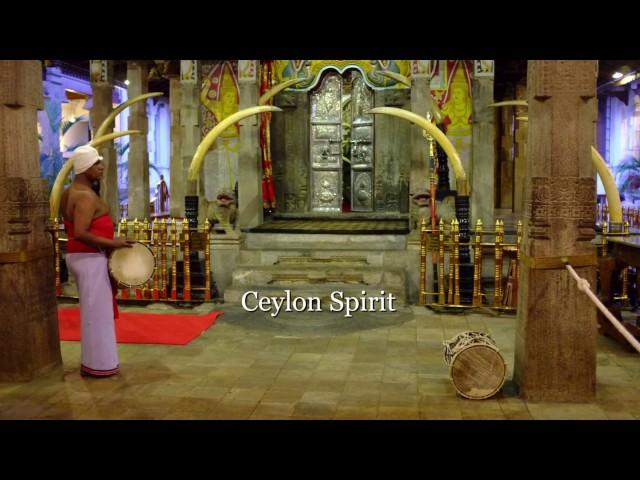 Ceylon Spirit