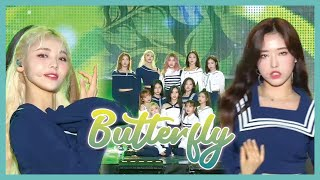 [HOT] LOONA - Butterfly,  이달의 소녀 - Butterfly Show Music core 20190803