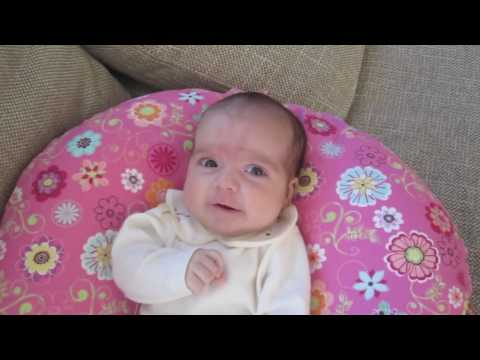 Violeta 2 meses Travel Video