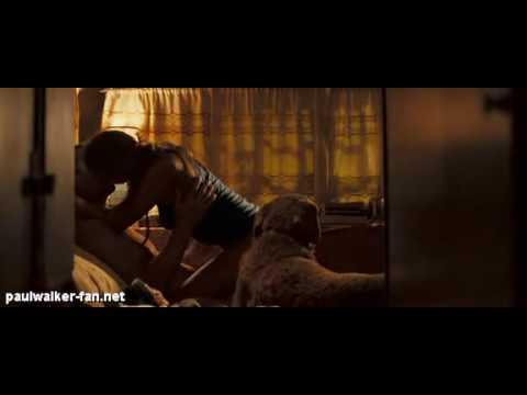 Paul Walker, Jessica Alba Dans Into The Blue