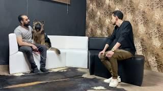 حلقة تعليمية من العيار الثقيل ( ٢ ) والكلب هاجمني آخر الحلقة بسبب متدرب !!