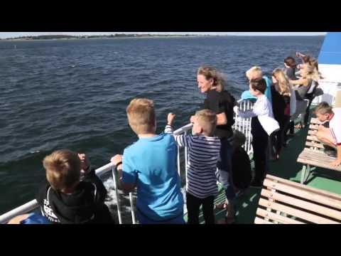 Ø-færgen - Avernakø - Lyø - Faaborg