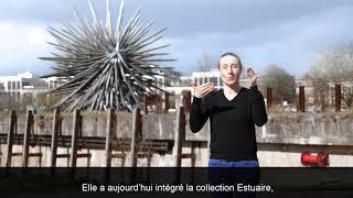 Résolution des forces en présence / Vincent Mauger / Video LSF