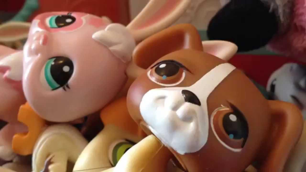 Store Wars  Beanie Boos VS LPS 2 - YouTube 9366b87125f9