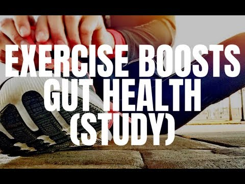 Exercise can boost gut healthy bacteria? Plus more w' Steph Lowe