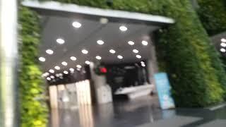 SeoulMetropolitan,백두대간수목원,춘양면,…