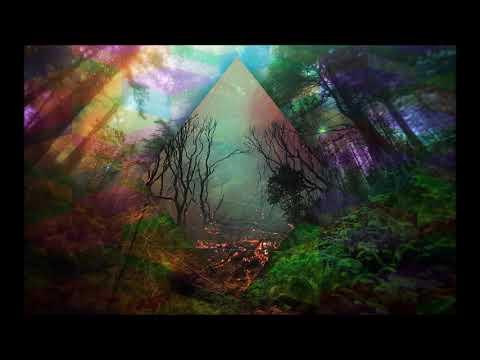 Dark Forest Psytrance Goa Mix 2019
