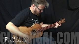 Bent Twig Parlor Guitar at Guitar Gallery