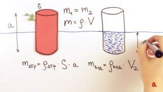 Плавание тел   Физика в опытах и экспериментах