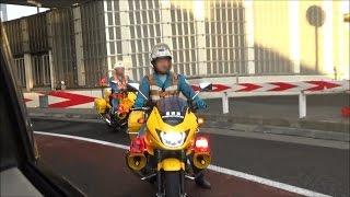 《黄バイ》首都高速道路 PATROL 緊走 青バイ 検索動画 12