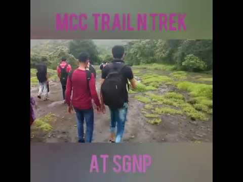A Walk to the Natural Beauty of Sanjay Gandhi National Park (SGNP)