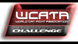 World Cat fight Association!