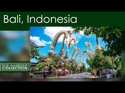 Treadmill Walks Virtual Scenery of Bali -Tropical Scenery, for Treadmill and Cycling Workout