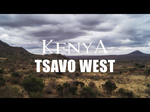 KENYA 2017 - Tsavo West National Park