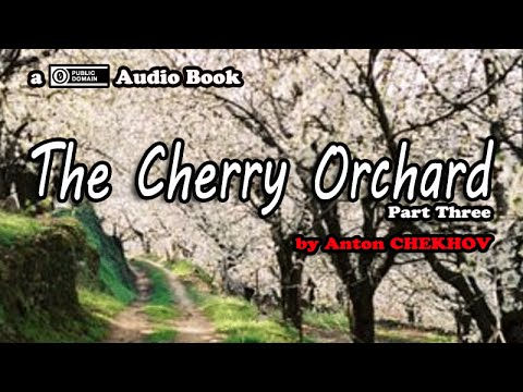 The Cherry Orchard [Part 3 of 9] by Anton Chekhov || Audio Book