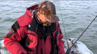 Моя рыбалка: Архив редактора 4