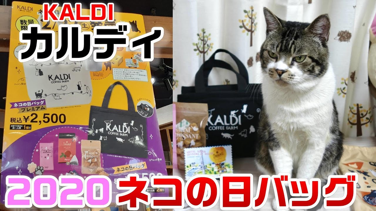 カルディ 猫 の 日 バッグ 2020