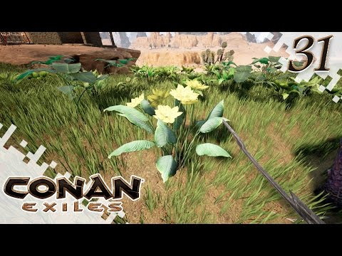 how to get aloe leaves in conan exiles
