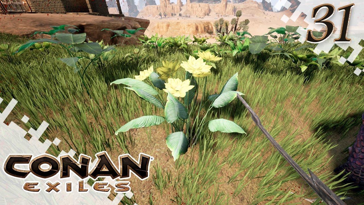 Conan Exiles Yellow Lotus Potion Ep31 Gameplay Youtube
