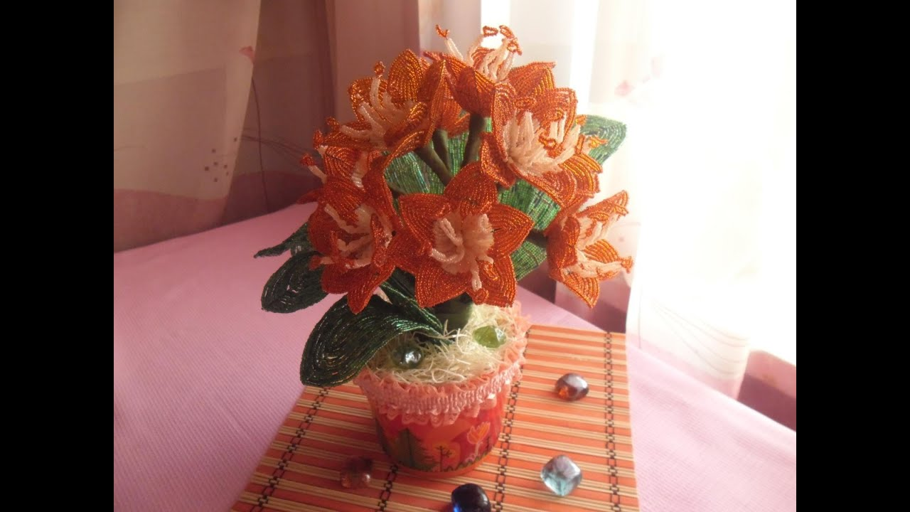 Декабрист цветок  уход и размножение в домашних условиях