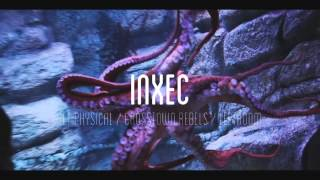 Animaux and Bullet:dodge present: Inxec (Trailer)